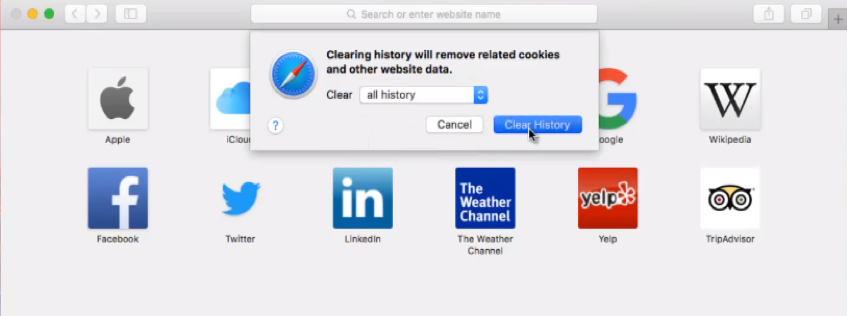 clear browser history safari